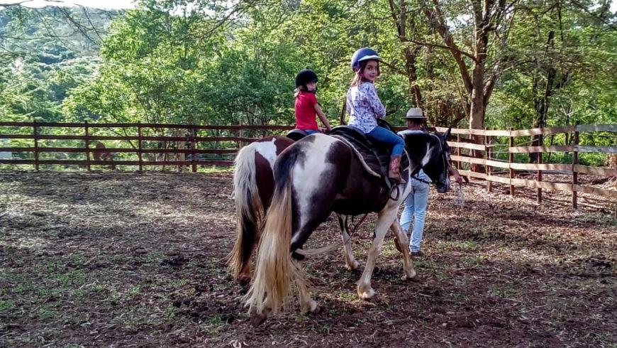 O que é a terapia com cavalos - Equoterapia